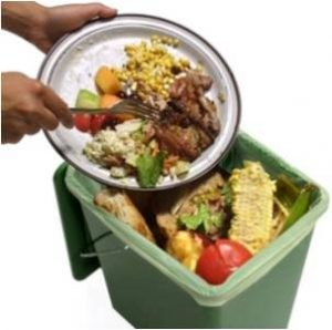 apocalottimismo compostaggio